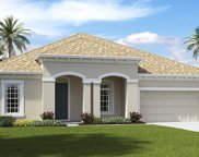 11801 Sunburst Marble Drive, Riverview image