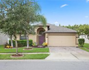 1619 Imperial Key Drive, Trinity image