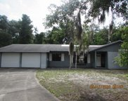 5101 Moll Acres Drive, Plant City image
