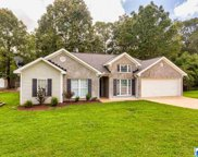20349 Castle Ridge, Mccalla image