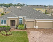 14414 Black Lake Preserve Street, Winter Garden image