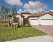 4278 Raffia Preserve Way, Naples image