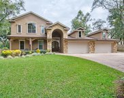 2551 Meadowview Circle, Windermere image