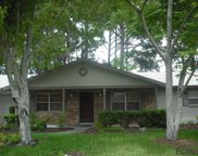 23 Felter Lane, Palm Coast image