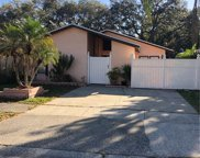 10507 Winrock Place, Tampa image