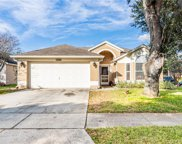 1289 Woodfield Oaks Drive, Apopka image