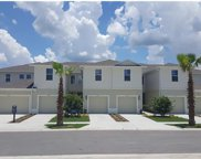 10956 Verawood Drive, Riverview image