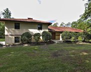 10215 RUSSELL SAMPSON RD, St Johns image