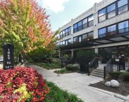 1069 West 14Th Place Unit 127, Chicago image
