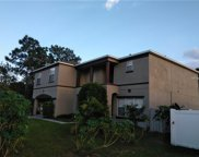 406 Arkansas Court, Poinciana image