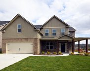 11314 Orvis Lane, Knoxville image
