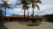 24206 Cerro Vista Way, Ramona image