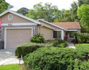 3121 Tanglewood Trail, Palm Harbor image