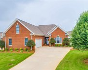 8 Willowleaf Court, Greenville image
