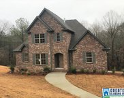 186 Willow Branch Ln, Chelsea image