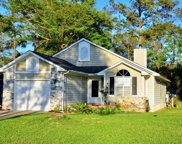 176 Carrington Point Dr, Pawleys Island image