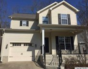 237 Riverbend Circle, Guntersville image