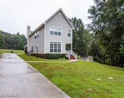 18345 Willow Court, Citronelle image