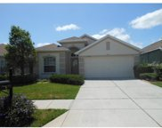 2834 Banyan Hill Lane, Land O Lakes image