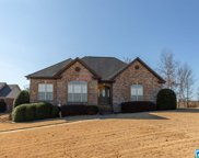 800 Courtnie Cir, Odenville image