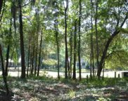 238 Locust Fence  Road, Dataw Island image