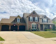 18894 Monarch Springs  Drive, Noblesville image
