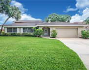 2096 Tanglewood Way Ne, St Petersburg image