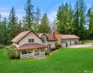 8803 314th Ave SE, Issaquah image