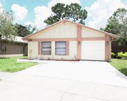 4817 Grove Point Drive, Tampa image