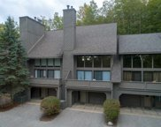 5851 S Pleasantview Unit #9, Harbor Springs image