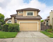 8433 Shadetree Drive, Windsor image