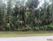 38 Postman Lane, Palm Coast image