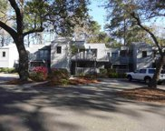 88 Salt Marsh Circle #22E Unit 22E, Pawleys Island image