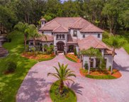 8303 Day Lily Place, Sanford image