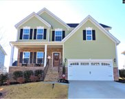 219 Golden Fluke Drive, Lexington image