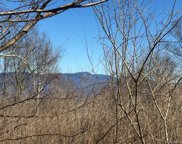 Lytle Cove  Road Unit #Tract F, Swannanoa image