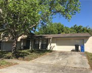16543 Forest Lake Drive, Tampa image