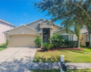 7330 Pulteney Drive, Wesley Chapel image