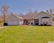 487 Cabbage Patch Road, Laceys Spring image