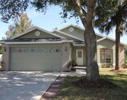 7702 Water Oak Court, Kissimmee image