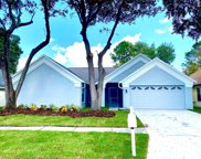 18213 Cypress Stand Circle, Tampa image