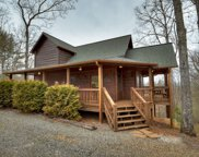 91 Black Gum Lane, Blue Ridge image