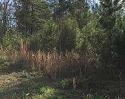 1 Acre Bunyan Ln., Conway image