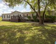 22135 Eastern Valley Road, Mccalla image