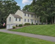 10 Tyler Drive, Londonderry image