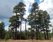 2385 W Mission Timber Circle, Flagstaff image
