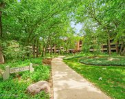 1401 Burr Oak Road Unit 313B, Hinsdale image