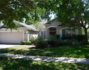 6204 Whimbrelwood Drive, Lithia image