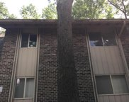 3636 Taliluna Ave Unit Apt 502, Knoxville image