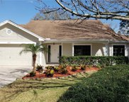 1005 Calle Rosa Place, Ruskin image